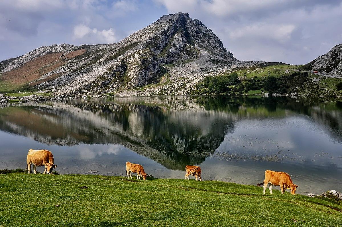 À conquista de Covadonga!