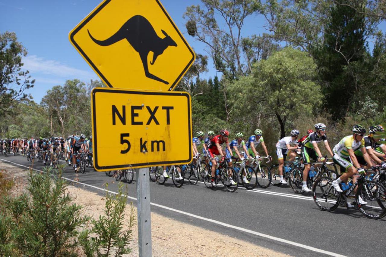 As más noticias para 2022 já arrancam. Tour Down Under e Cadel Evans Race fora do calendário!